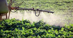 FOTO: Uporaba pesticida